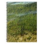 Imagen subacuática de la hierba de la charca libros de apuntes