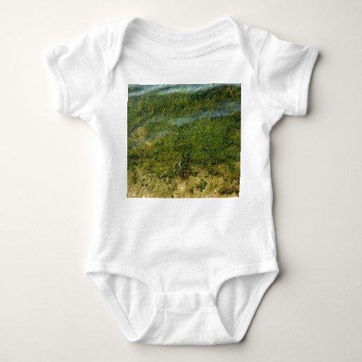Imagen subacuática de la hierba de la charca t shirt