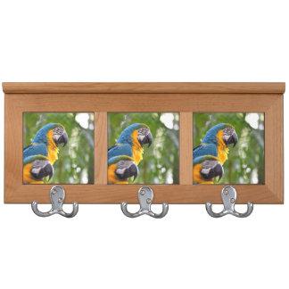 imagen trasera c.jpg del pájaro del foco de dos ma