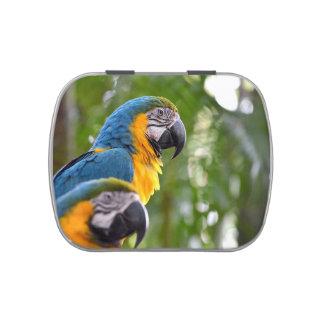 imagen trasera c.jpg del pájaro del foco de dos ma jarrones de caramelos