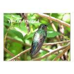 Imagen tropical del colibrí invitación 12,7 x 17,8 cm