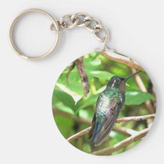 Imagen tropical del colibrí llavero personalizado