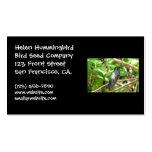 Imagen tropical del colibrí tarjetas de visita