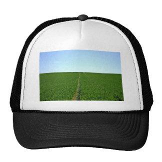 Imagen verde de la granja gorros