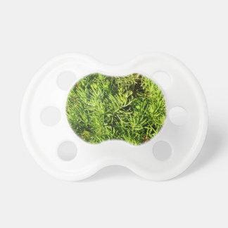 imagen verde suculenta total del follaje chupetes de bebe