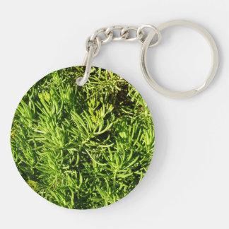 imagen verde suculenta total del follaje llavero redondo acrílico a doble cara