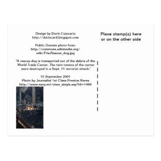 Imagen WTC6 en la parte trasera no-brillante de la Tarjetas Postales