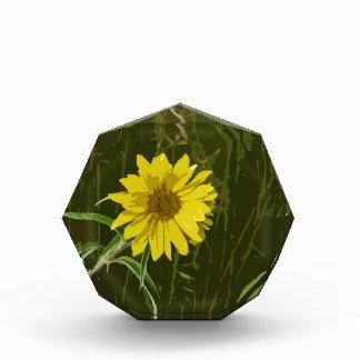 Imagen y verde amarillos preciosos del estilo de