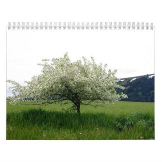 Imágenes de América Calendarios