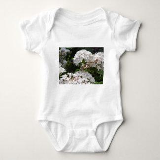 Imágenes de la mariposa t-shirts