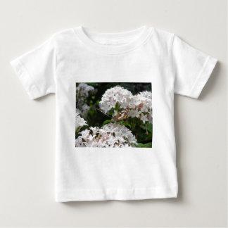 Imágenes de la mariposa camiseta