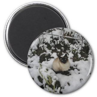 Imágenes de la nieve, gato de la nieve imán redondo 5 cm