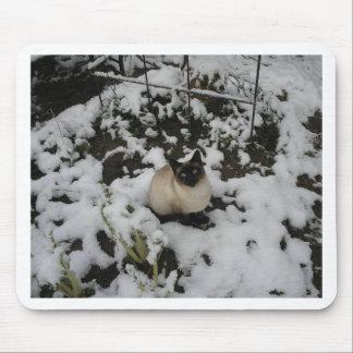 Imágenes de la nieve, gato de la nieve tapetes de raton