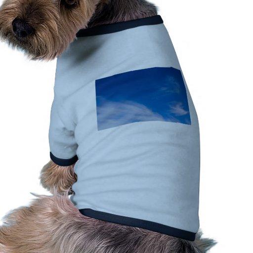 Imágenes de la nube ropa perro