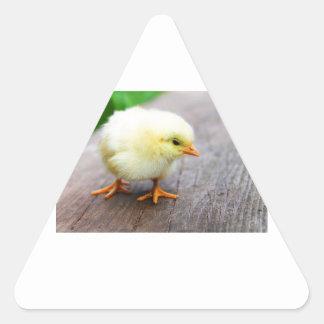 Imágenes de los polluelos pegatina triangular