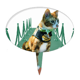 Imágenes de mi gato Frasier