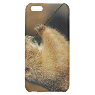 Imágenes del caso del iPhone 4 de los perros de la