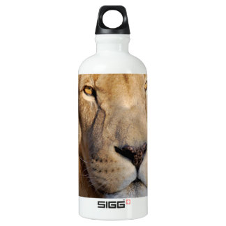 Imágenes del león