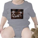 Imágenes del perrito camiseta