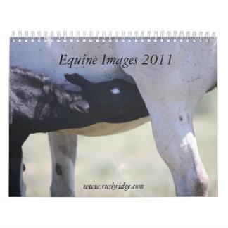 Imágenes equinas 2011 calendario de pared