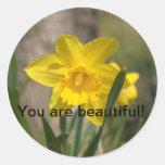 Imágenes hermosas de la naturaleza para adornar su etiquetas redondas