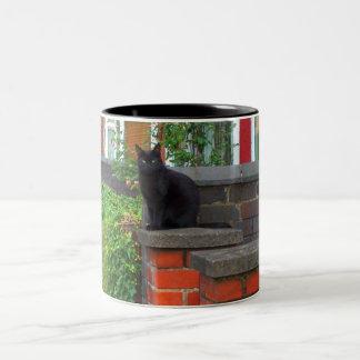 Imágenes inglesas del campo (3) tazas de café