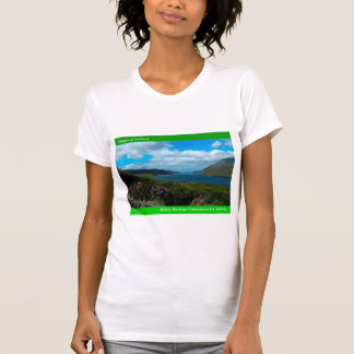 Imágenes irlandesas para la mujer-t-camisa playera