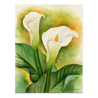 Imágenes o imágenes de la pintura de las flores de tarjetas postales