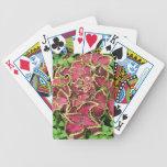 Imágenes preciosas 05 del jardín baraja de cartas