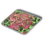 imágenes preciosas 05 del jardín mangas de iPad