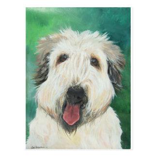 Imágenes suaves del perro de Wheaton Terrier Postales