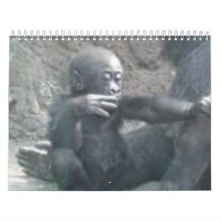 images8 calendarios