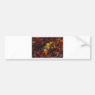 Images of Autumn Bumper Sticker