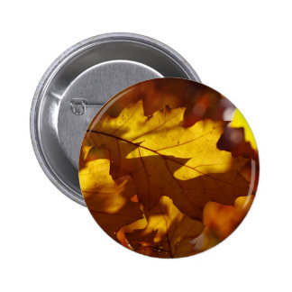Images of Autumn Pin