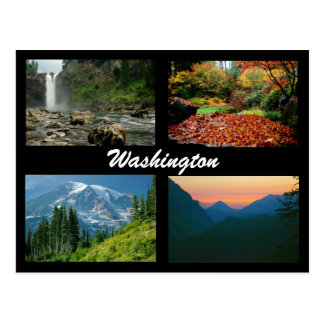 Images of Washington postcard