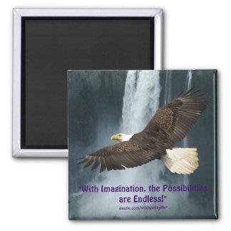 Imagination Eagle & Water-Fall Motivational Magnet