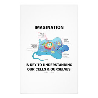 Imagination Is Key To Understanding Our Cells Stationery