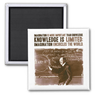 Imagination is more important than knowledge 2 inch square magnet