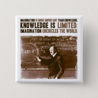 Imagination is more important than knowledge pinback button
