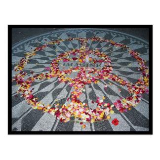 imagine petals postcard