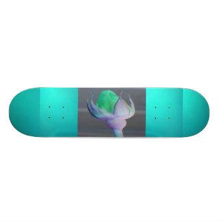 Imagine Skateboard