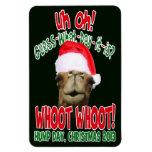 Imán 2013 del refrigerador de Flexi del navidad de