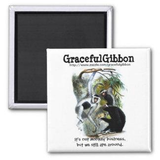 Imán agraciado del Gibbon