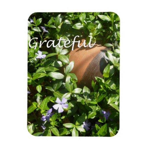 Imán agradecido del jardín