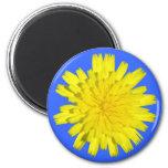 Imán amarillo de la flor