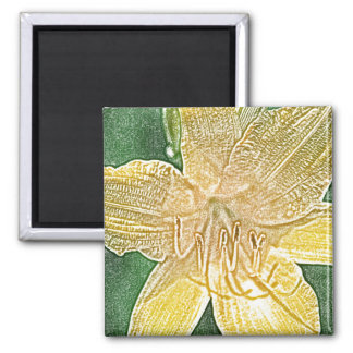 Imán amarillo de la flor del daylily de Stella de