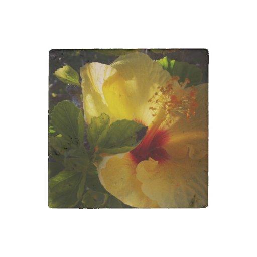 Imán amarillo de la piedra de la flor imán de piedra