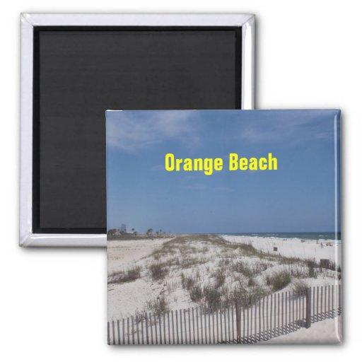 Imán anaranjado de la playa