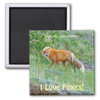 Imán animal del arte de la fauna del Fox-amante ro
