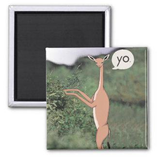 Imán animal del saludo (Gerenuk)